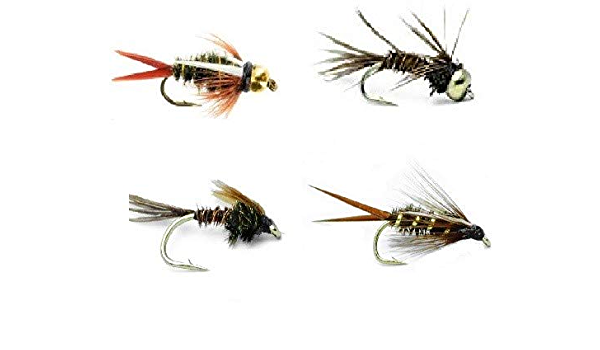 3 Size Assortment 14,16,18 PUPA WD50- One Dozen Wet Flies Fly Fishing Nymph Flies for Trout Lightning Bug 4 of Each Size Mayfly Caddis