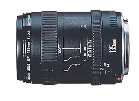 The 8 best canon lens review 100 400