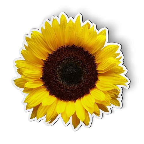 AK Wall Art Sunflower - Magnet - Car Fridge Locker - Select -