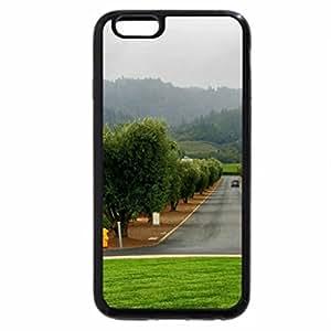 iPhone 6S / iPhone 6 Case (Black) road through vineyards