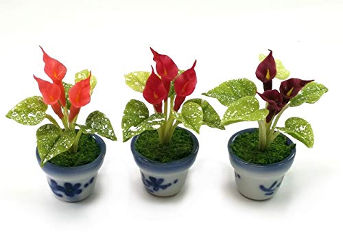 TheBestBuy Set of 3 Dollhouse Miniature Accessories Red Tone Peace Lily in Ceramic Pots from TheBestBuy