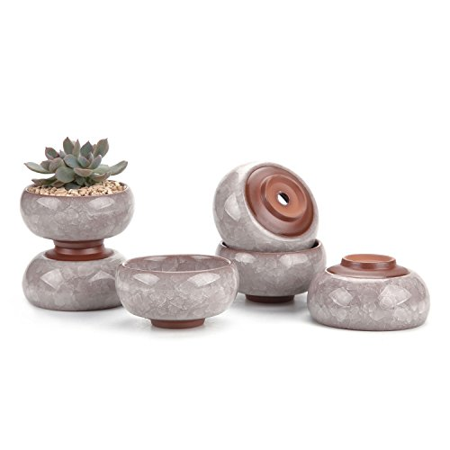 T4U 2.5 Inch Ceramic Ice Crack Zisha Serial Succulent Plant Pot Cactus Plant Pot Flower Pot Container Planter Slategray Package 1 Pack of 6