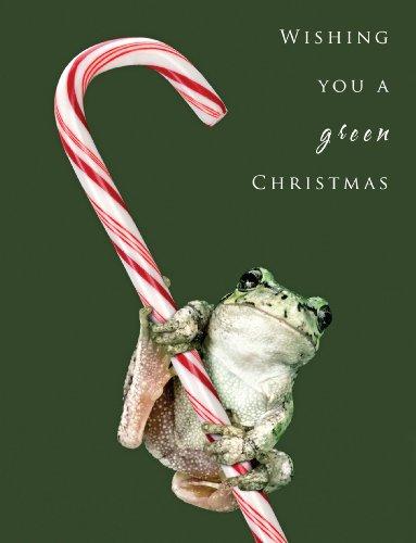 Christmas Frog Christmas Cards