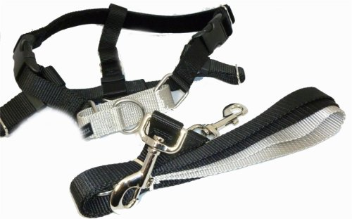 Freedom-No-Pull-Velvet-Lined-Dog-Harness-and-Leash-Training-Package-Black-XL