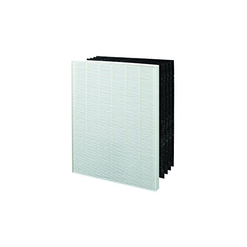 Winix 113250 Replacement Filter E (Winix Hepa Air Purifier)