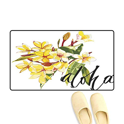 doormatIllustration with Realistic Watercolor Plumeria Flowers Beautiful Bouquet with Tropical Plants and Word Aloha EPS 10 Outdoor Doormat ()