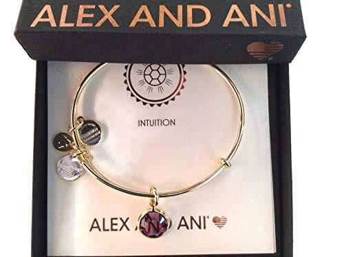 Alex and Ani Women's Swarovski Color Code Bangle February Amethyst Bracelet, Shiny Gold