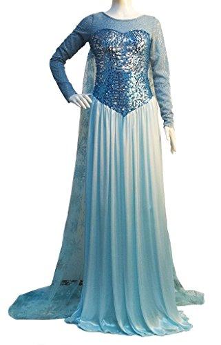 Snow Queen Elsa Costume Adult Princess Dress