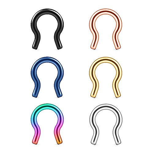 Ruifan 6PCS 316L Surgical Steel U-Shaped & Staple Nose Septum Hanger Retainer Nose Ring 12g (Mix Colors 2#)