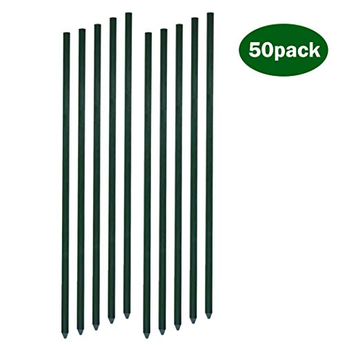 - GaStake Solid Garden Stakes Fiberglass Poles Fence Post Heavy Duty Plant Stakes for Tomato,5ft,Dark Green,50Pack