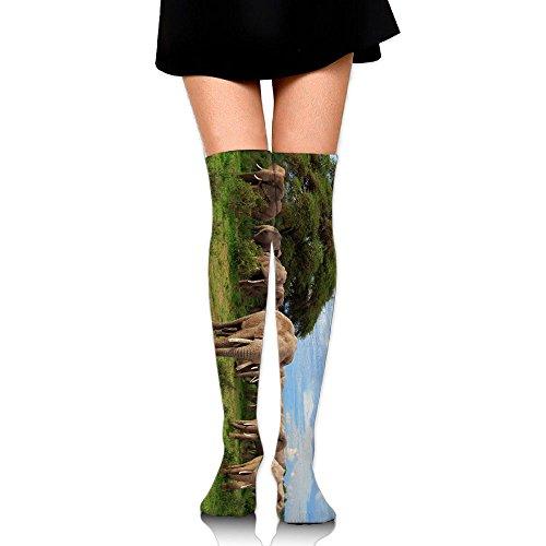 RobotDayUpUP Gree Grass Elephant Womens Long Socks,cotton Girls Skirt Stockings Knee Thigh Socks For Running Soccer Sports Dance Yoga Cheerleader Hiking (Season Long Grass)
