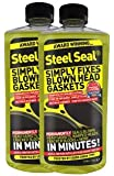 Steel Seal Blown Head Gasket Fix Repair Sealer - 8 Cylinder