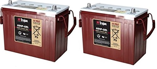 Replacement For KARCHER B 40 C BP 24 VOLTS 2 PACK Battery