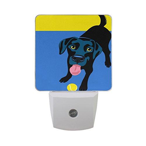 ALAZA LED Night Light with Smart Dusk to Dawn Sensor,Black Labrador Retriever Playing Fetch Plug in Night Light Great for Bedroom Bathroom Hallway Stairways Or Any Dark Room (Labrador Light Night)