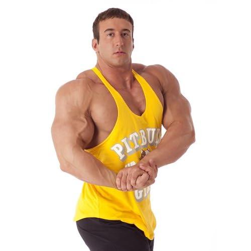 7f62365b1b4c5 durable service Pitbull Gym