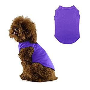 Chol & Vivi Dog Shirts Clothes, Dog Clothes T Shirt Vest Soft And Thin, 2pcs Blank Shirts Clothes Fit For Extra Small Medium Large Extra Large Size Dog Puppy, Medium Size, Blue And Purple