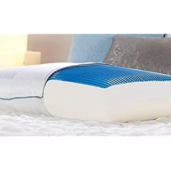 Amazon Com Sealy Memory Foam Amp Hydraluxe Gel Bed Pillow
