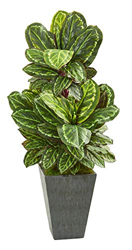 Artificial Plant -53 Inch Maranta Plant with Slate Finished Planter Silk Plant