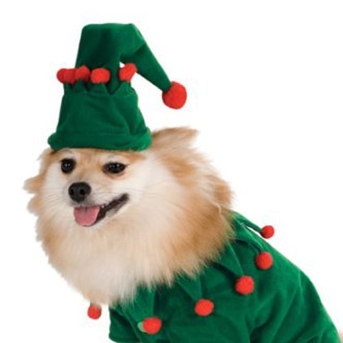 Elf Pet Costume, Medium by Rubie's (Image #4)
