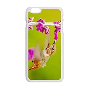 "Durable Platic Case Cover for iPhone6 Plus 5.5""-Hummingbird Pattern Printed Cell Phones Shell"