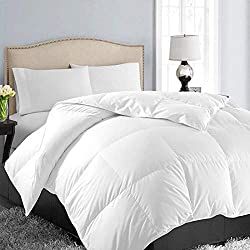 EASELAND All Season Queen/Full Soft Quilted Down Alternative Comforter Hotel Collection Reversible Duvet Insert Fill with Corner Ties,Warm Fluffy Hypoallergenic,White,88 by 88 Inches