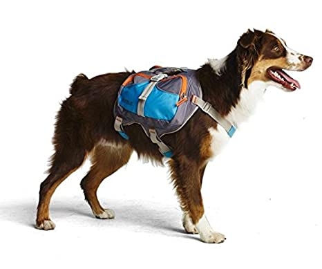 Cesar Millan Dog Backpack - Pet Backpack/Saddlebag Training Tool Behavior, Balance Weight Loss | Plenty Pockets to Hold Weight, Water Treats Cesar' s Way Inc. CM000LG-BLUw