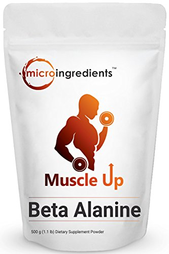 Premium Pure Beta Alanine Powder, 500 grams (1.1 lb), Improves Muscle Gains / Increases Workout Capacity / Reduces Muscle Fatigue
