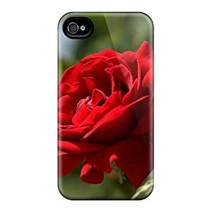 New Style Cases Covers WIL35938oLhI Deep Red Rose Compatible With Iphone 6 Protection Cases
