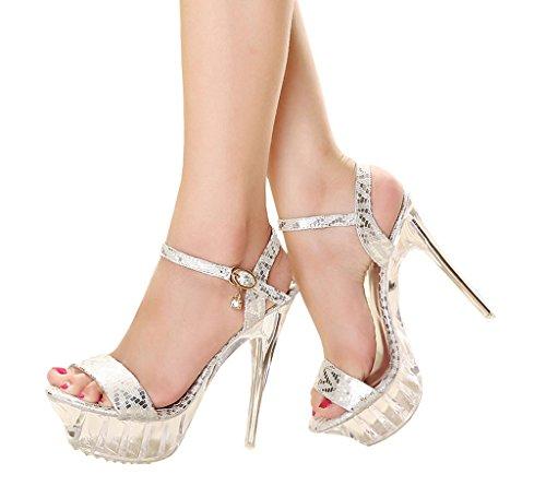 CAMSSOO Women's Peep Toe Ankle Strap Ladies Slingback Platform High Heels Sandals Silver5 RprfqPwa