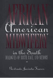 the archaeology of mothering an africanamerican midwifes tale