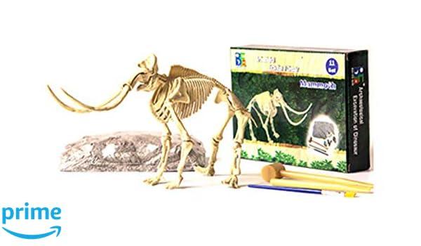 Merlin Scientific® Dino Dig Kits Dinosaur Excavation Set