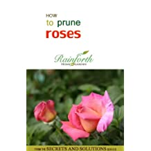 How to Prune Roses (Rainforth Home and Garden's Secrets and Solutions)