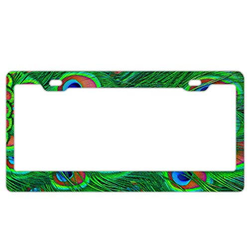 Steel Peacock Feather - Green Peacock Feather Pattern License Plate Frames Stainless Steel Car Licence Plate Covers Slim Design for US Standard 2 Hole and Screw