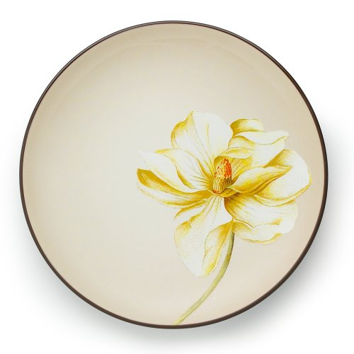 (Noritake Colorwave Chocolate Accent Plate, 9-Inch)
