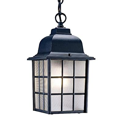 Acclaim 5306BK Nautica Collection 1-Light Outdoor Light Fixture Hanging Lantern, Matte Black