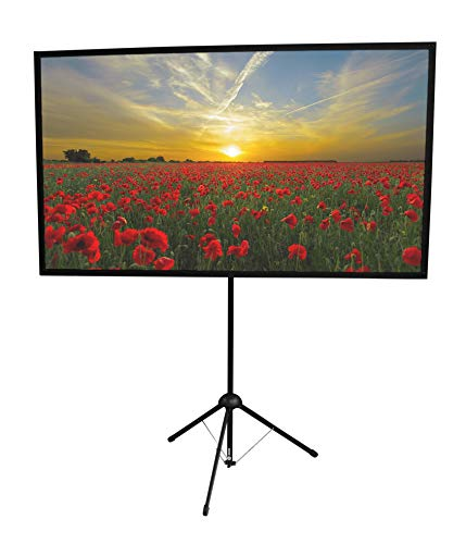 Format Tripod Screen - GO-70 Portable Projector Screen | 70 inch | Mounts on Tripod AND Wall | 16:9 format | 9 lbs | 2 minute setup | Includes Carrying Bag | For Mobile presentation and Home Entertainment |4K Ultra HD ready