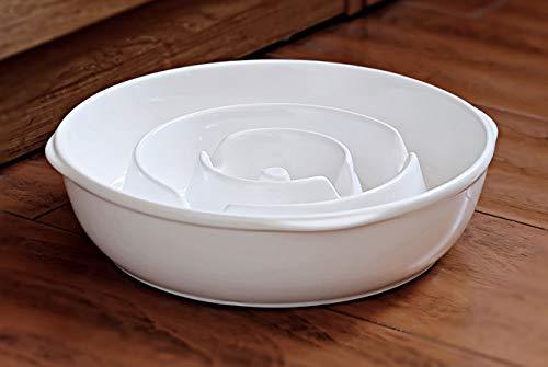 BestVida Premium Stoneware Bowl (Large, Slow Feeder) (Dogs Large Ceramic)