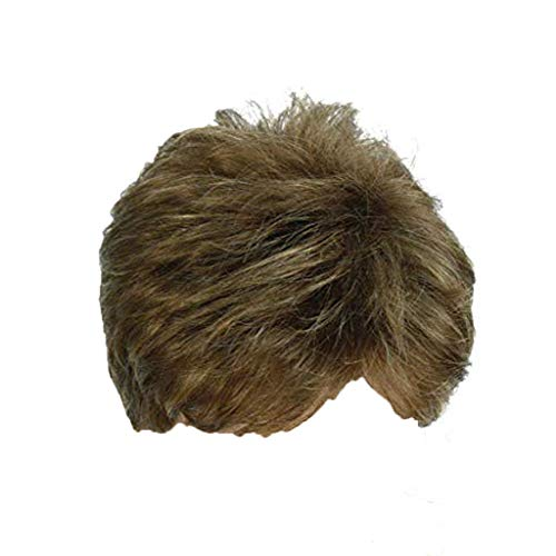FeiFei66 Men's Fashion Gentleman Short Golden Brown Gradient Charming Hair Cosplay Party Wig,Approx.15cm/6 inch]()