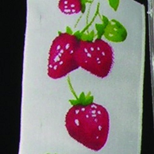 White, Red and Green Wired Taffeta Print Strawberry on the Vine Garden Craft Ribbon 1.5