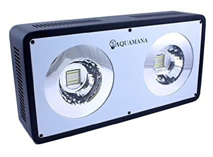 AQUAMANA 156W COB LED Full Spectrum Aquarium Lighting Panel with Two 78W COB Modules for Coral