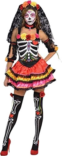 (AMSCAN Day of the Dead Senorita Halloween Costume for Women, Large, with Included)