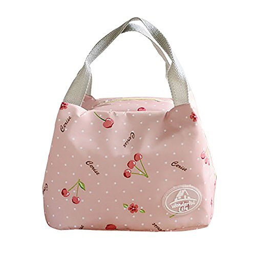 Lunch Bags, Thermal Insulated Cold Canvas Cherry Print Tote Picnic Carry Case Portable Lunch Bag For Women Kids (B, Size: 23.5x15.5x30cm)