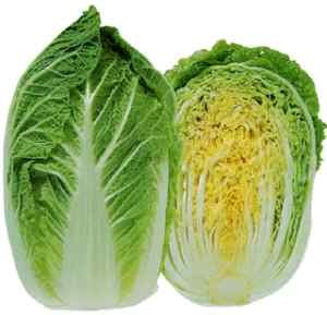"(VCABO)~""MICHIHILI"" CABBAGE~Seeds!~~~~~~~~Sweet Chinese Napa Variety!"