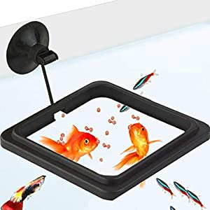 """Feeding Ring (4"""" inch) - Practical Floating Food Square - Reduces Waste & Maintains Water Quality - Suitable for Flakes & Other Floating Fish Foods - for Guppy, Goldfish and Other Smaller Fish 5"""