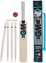 Gunn & Moore GM Cricket Unisex Beginner Child Diamond Cricket Set - Age (11-13) Si