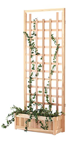 All Things Cedar PL30-T Planter Trellis Screen, 2-Piece ()