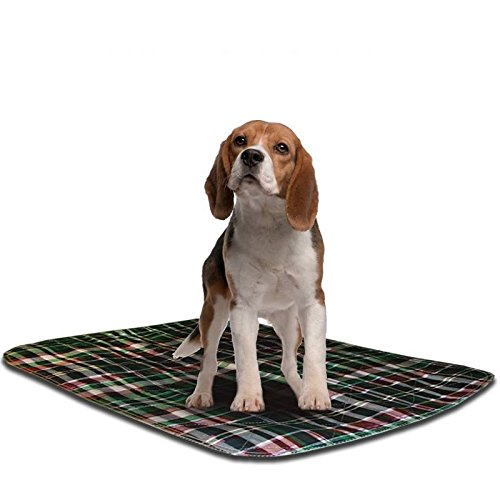 "Reusable Housebreaking Pad (LennyPads Ultra Absorbent, Reusable, Training, Housebreaking and Travel Washable Pee Pads – (24""x36"" Picnic Plaid) XL Long Pad)"
