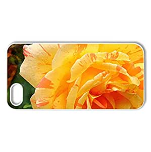 Beautiful Rose - Case Cover for iPhone 5 and 5S (Flowers Series, Watercolor style, White)