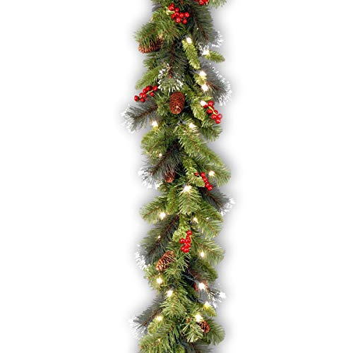 National Tree 9 Foot by 10 Inch Crestwood Spruce Garland with Silver Bristle, Cones, Red Berries and 50 Clear Lights (CW7-306-9A-1) (Renewed)