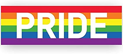 Amazon Com Pride Rainbow Striped Banner For Marches Events 53 X 17 Vinyl Banner Health Personal Care